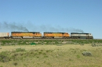 BN 9539 with BNSF 8896 and 9924