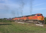 BNSF 4198  30Aug2004  SB approaching Wonder World Drive