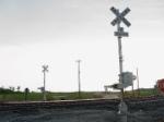 New crossing signals