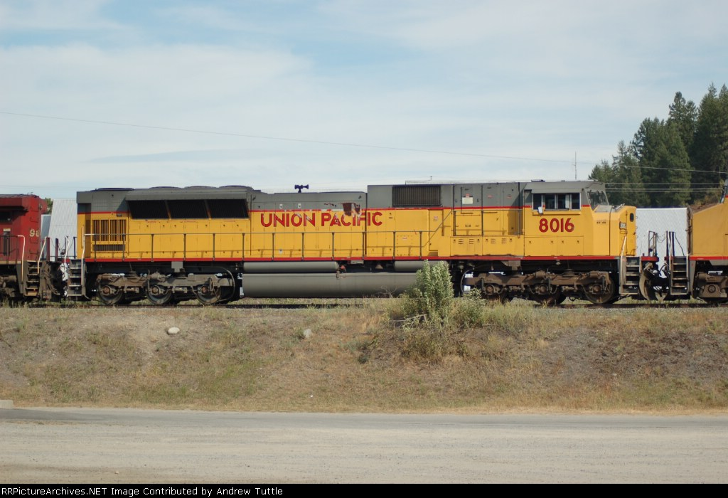 UP 8016