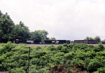 NS 9177