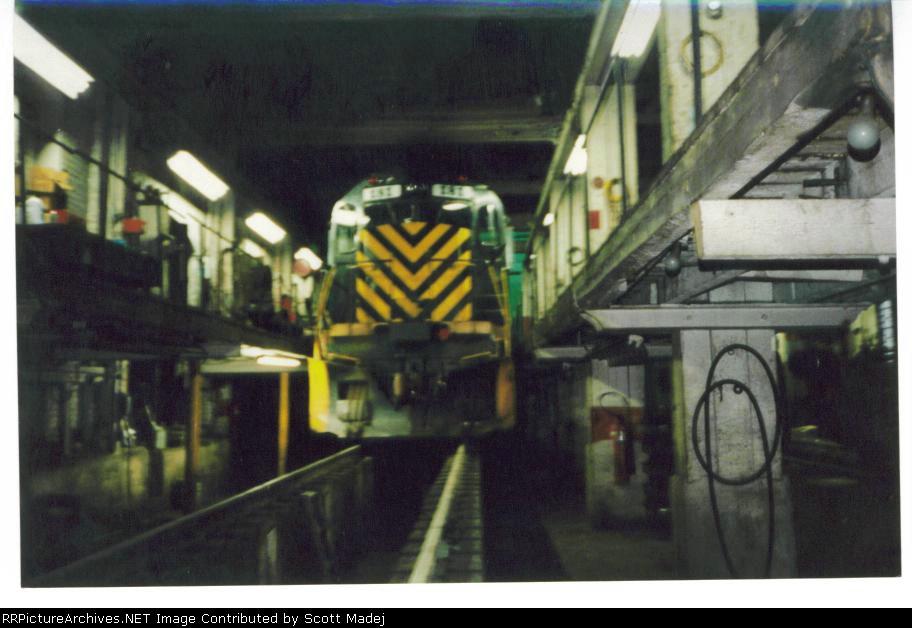 DM 181