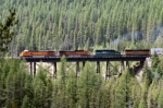 BNSF 4597