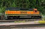 BNSF 8029