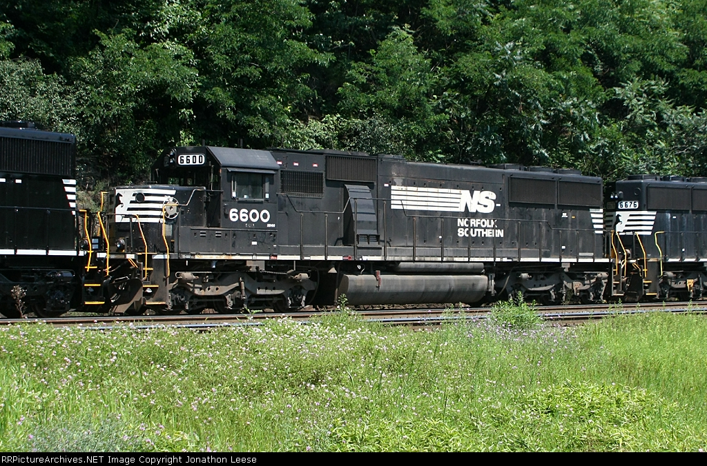NS 6600