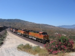 BNSF 4673
