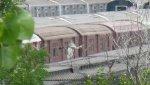 NYCT IRT Main Line R36s 9542 & 9543
