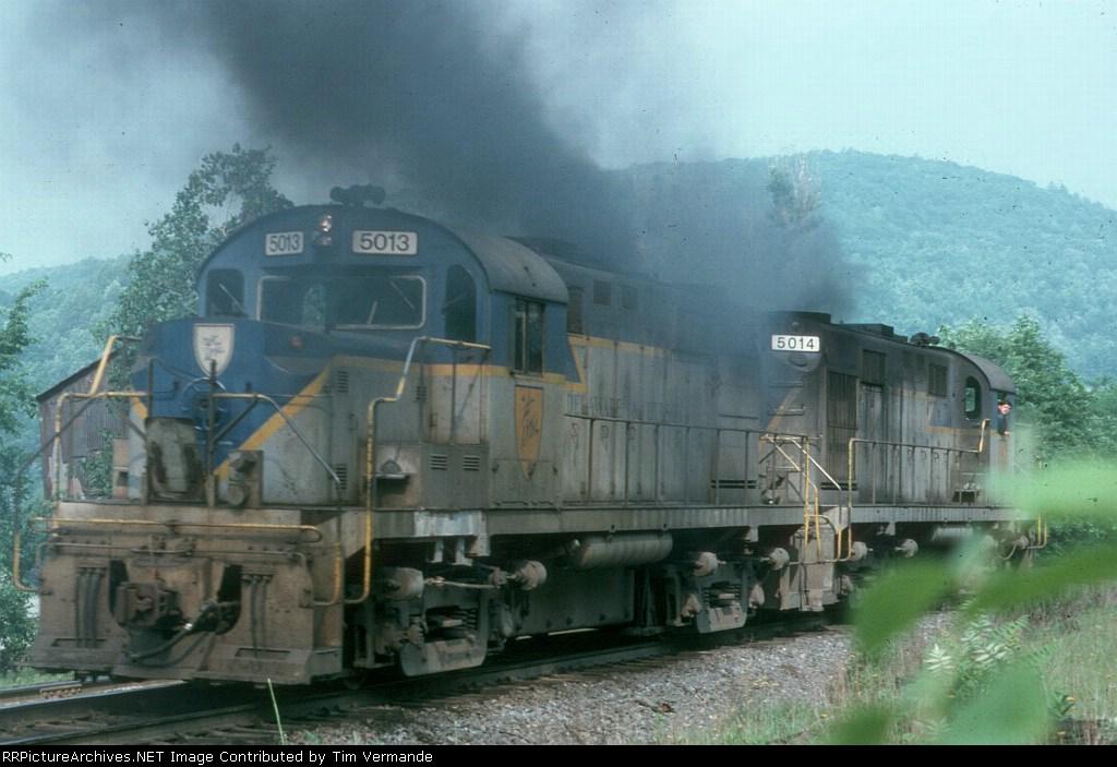 DH 5013