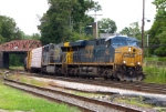 Pan Am/CSX Train POSE
