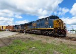 Pan Am/CSX Train SEPO