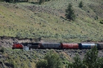 Eastbound Canadian National Railway (CN) Unit Grain Train led by GE ES44DC No. 2288