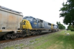 CSX 8762 and train scare the poop out of a dog