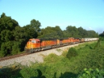 BNSF 8841 coming kudzu alley