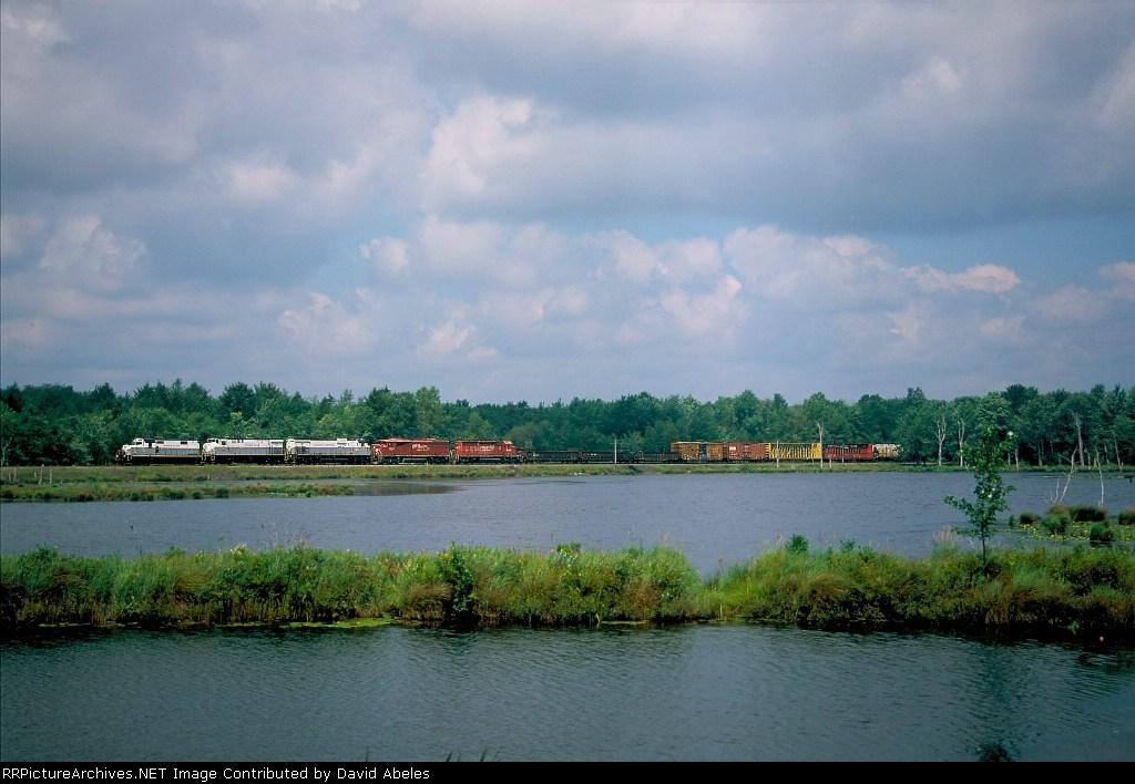 Along Snag Pond