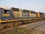 CSX 8365