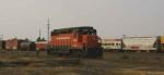 PCC 4229