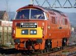 D1015 'Western Champion'