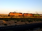 NB coal train