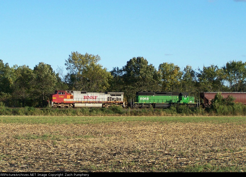 Northbound BNSF Empty Grain Train With a Warbonnet BNSF 790 C44-9W