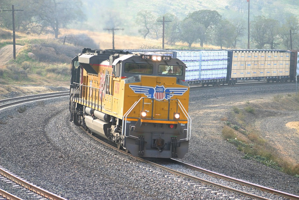 UP 8391