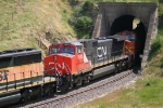 CN 2683 Trails through Tunnel 2