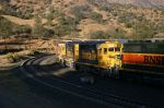 ATSF YellowBonnet pair trail