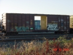 AERC 5155