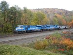 NS 7215 & NS 7214 in splendid fall colors