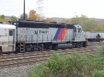 Another ex-CNJ Geep