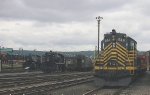 New York, Chicago & St. Louis Railroad (the Nickel Plate Road) #514  EMD-GP-9 plus view of the assorted Steamtown collection
