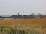 CSX 5356 & 5280 across the field