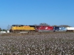 Southbound Intermodal With Heritage Locomotives