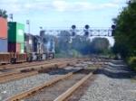 NS 8371