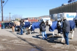 The Ringling Brothers and Barnum & Bailey Circus horse and trainers wait in the cold