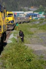 Alaska Railroad (ARR) Passenger Train Meet