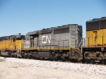 CN 5955