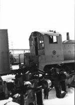 NYSW 116