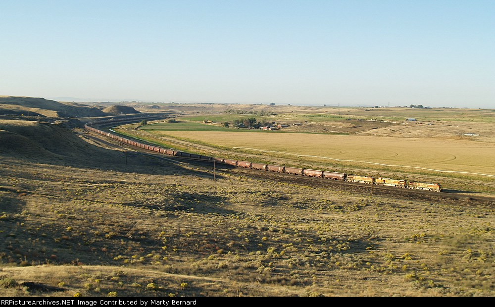 BNSF 5262, 5003, and 5014