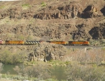 BNSF 4498 and 4486, CN 2409, and BNSF 4126 and 925 in the Deschutes River Canyon