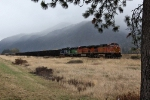 BNSF 5121, 6291, and 2089, and MRL 264