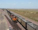 BNSF 6092 and UP 5986, Full East Bound (geographically south), Empty West Bound (geographically north)