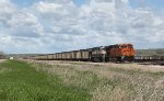 Eastbound BNSF 6276 and 9787 Waiting Next to Yard