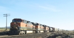 BNSF 973 NB on the Oregon Trunk