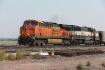 BNSF 6316 and 9586