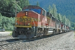 BNSF 113 at Scenic