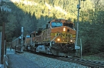 BNSF 5385 at East Scenic