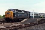 55022 'Royal Scots Grey'