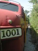 OHCR 1001