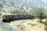 "SP 7336, 8540, 7305, And Adother With SB ""Cans"" On Tehachapi Loop"
