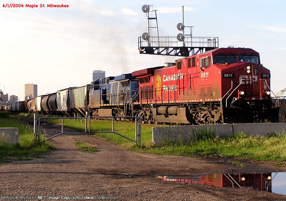 CP 9811's beaver is feeling reflective @ Maple St.